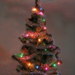 Beautiful Christmas Tree, it is what wayfarers dreamed of as the struggled in the cold and the distress.